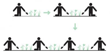 actie-reactie proces