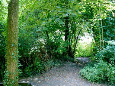 ecologische tuin3